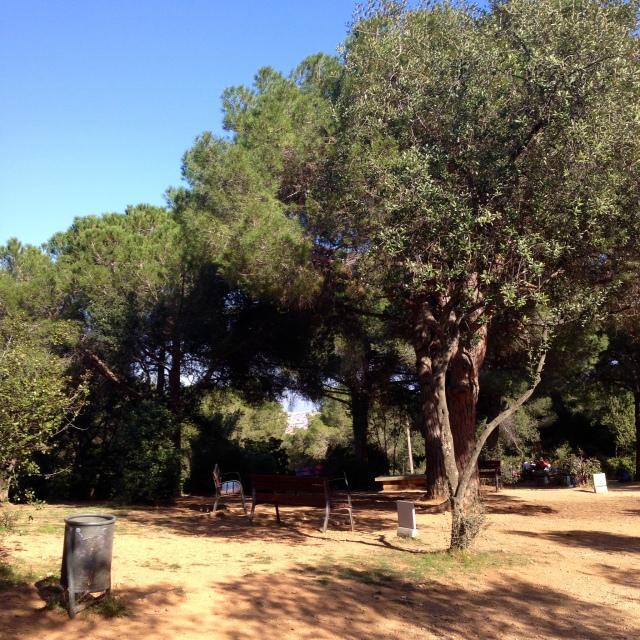 El parc de l'oreneta barcelona