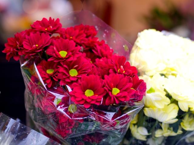 margaritas en el mercado semanal de st albans